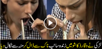World Most Dangerous Audition A Girl Cross the Snake From Nose To Mouth in Waqar Zaka Show Over The Edge Most Daring Girl Dr Ayesha Hussain Who Only One That Girl Complete The Dare