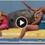 Australian girl in sea with shark